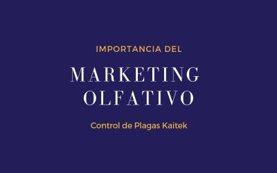 LA IMPORTANCIA DEL MARKETING OLFATIVO